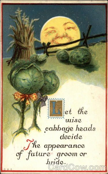 cabbage4