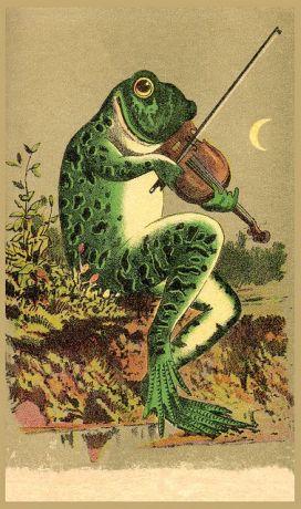 695b954b1d98ac97456af986f7b911c6--frog-pics-frog-art