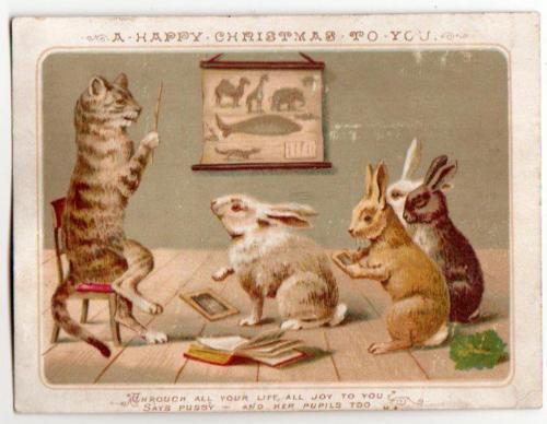 Victorian-Xmas-Card-Pussy-teaching-Rabbit-pupils