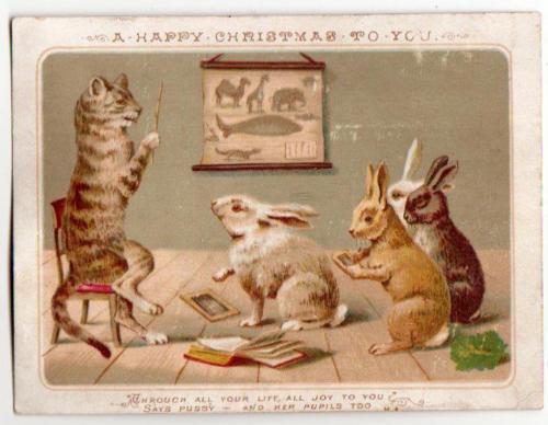 Victorian-Xmas-Card-Pussy-teaching-Rabbit-pupils