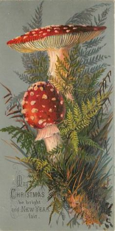 18d795387a76c656221a5f4fb3609486--antique-christmas-vintage-christmas-cards